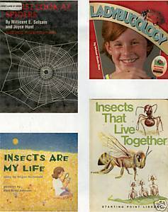 LADYBUGOLOGY;INSECTS;SPIDERS;INSECTS LIVE TOGETHER-4BKS