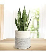 Rope Plant Basket Modern Woven Basket Indoor Planter Up to 10 Inch Pot W... - $23.10 CAD
