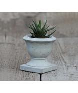 Succulent Concrete Planter 02 Cement Handmade Flowerpot Home & Garden Gray - $27.95