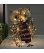 Lighted Rustic Woodland Grapevine Owl Sculpture Outdoor Christmas Decor ... - $98.50