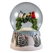 Multi Birds on a Wreath Water Globe San Francisco Music Box - $50.56