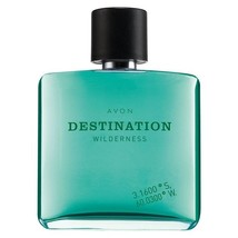 Avon Destination Wilderness Eau de Toilette For Him 75 ml New Rare - $14.99