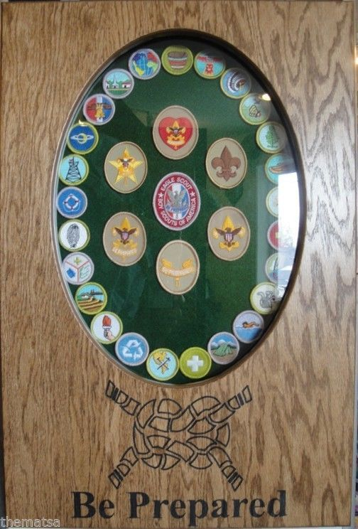 Primary image for BOY SCOUTS MERIT BADGE DISPLAY CASE SHADOW BOX