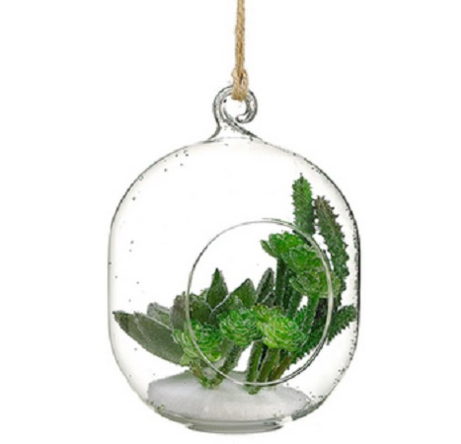 "6"" Artificial Green Succulent in Oblong Orb with Hole Hanging Glass Terrarium"