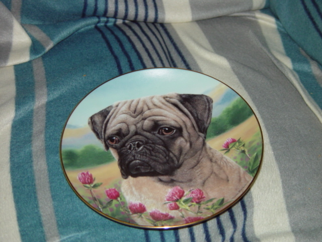 Prairie Pug Danbury Mint Plate By Simon Mendez