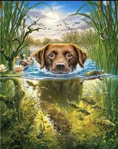 USA - DIY Paint by Number Kit Acrylic Painting Home Decor - Labrador Adv... - $18.80