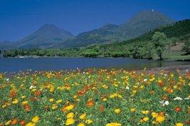 And 1500 Peace Poppy Yufu-Tsurumi (Beppu, Oita Prefecture) 15-116 (japan... - $59.02