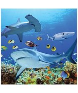 Tree-Free Greetings Premium Refrigerator Magnet, 3.5 x 3.5 Inches, Shark... - $8.70