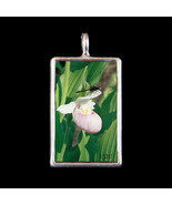 Showy Lady Slipper Orchid and Dragonfly Photogr... - $19.99