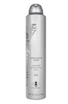 Kenra Professional Heat Block Spray 22,  8oz