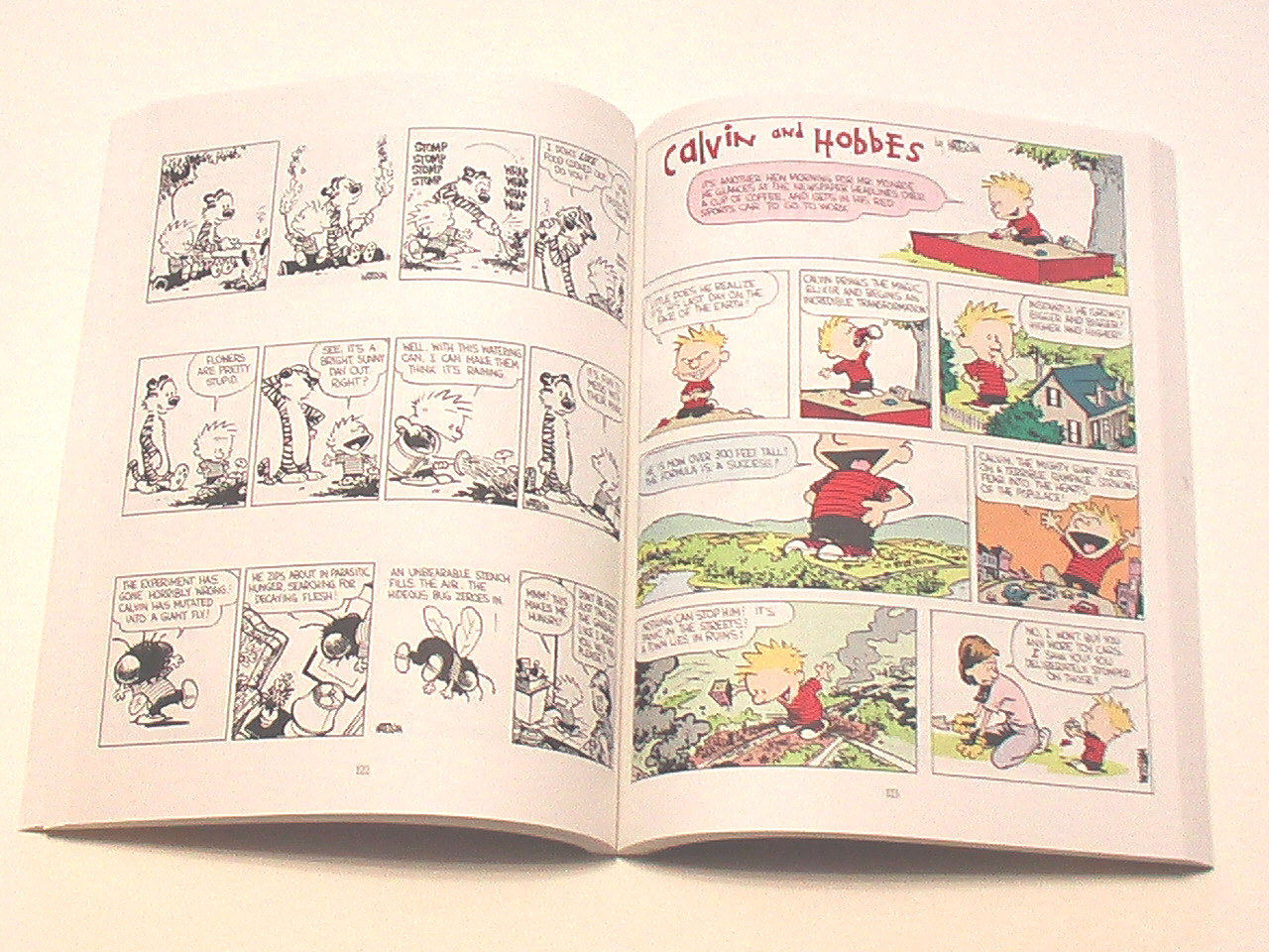 The Essential CALVIN AND HOBBES ( Softcover )