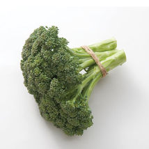 Atlantis Broccoli Seed ,Vegetable Seeds, Ship From US - $18.00