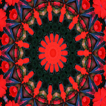Red and Blue Mandala- 5 x 5 Photograph Metallic Paper - $15.00