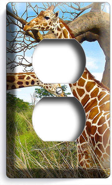 AFRICAN SAFARI GIRAFFE COUPLE LOVE ANIMAL OUTLET WALL PLATE COVER ROOM ART DECOR