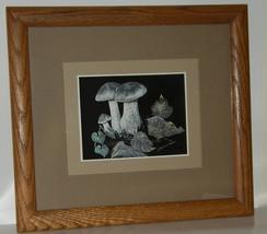 Mushrooms thumb200