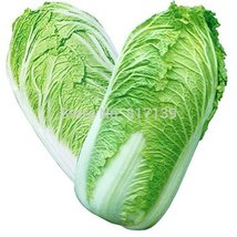 500 Seeds Michihili, Chinese Cabbage Seeds, NON-GMO - $9.90