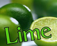 Ginger Lime Oil Perfume Rollette 6 mil