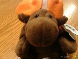 1st Edition TY Beanie babies Rare Chocolate the Moose No Stamp, PVC - $7.99