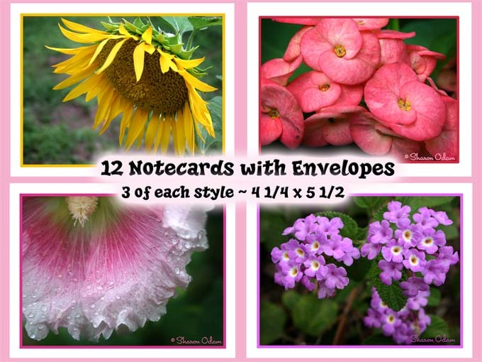 Note card flowers01 web