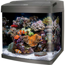 Aqueon Black Coralife Bio Cube Led Aquarium 16 Gallon - $449.46