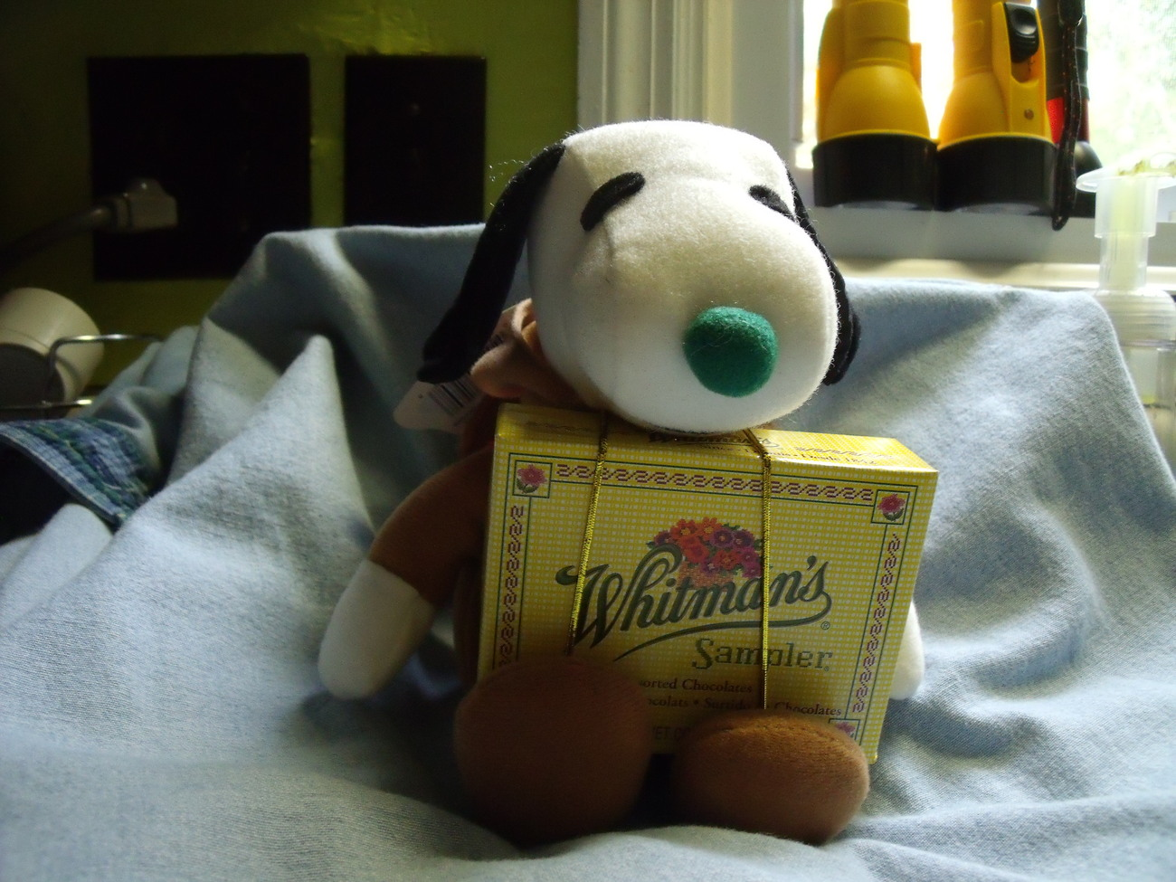 Snoopy jingle rein