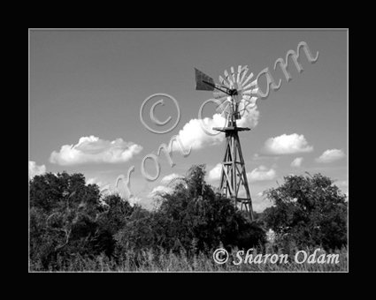 Primary image for Texas Wooden Windmill - WM0020BW - Fine Art Photography