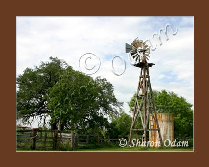 Wm 0038 windmill yancey04