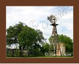 Wm 0038 windmill yancey04 thumb155 crop