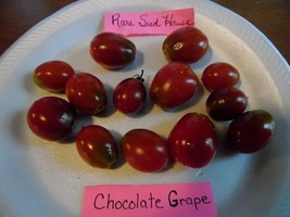 Chocolate Grape Tomato Seeds - Loads of fruit! Comb. S/H See our store! - $15.48