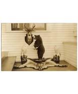 Postcard - TAXIDERMY COLLECTION - BEAR, OWLS, ETC. RPPC  - $15.00