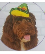 Dog TACO HAT Rubies Pet Shop Boutique Dress up Costume  SMALL/MEDIUM S/M... - $2.60