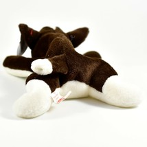 1997 TY Beanie Baby Original Bruno Brown White Dog Beanbag Plush Toy Doll image 2