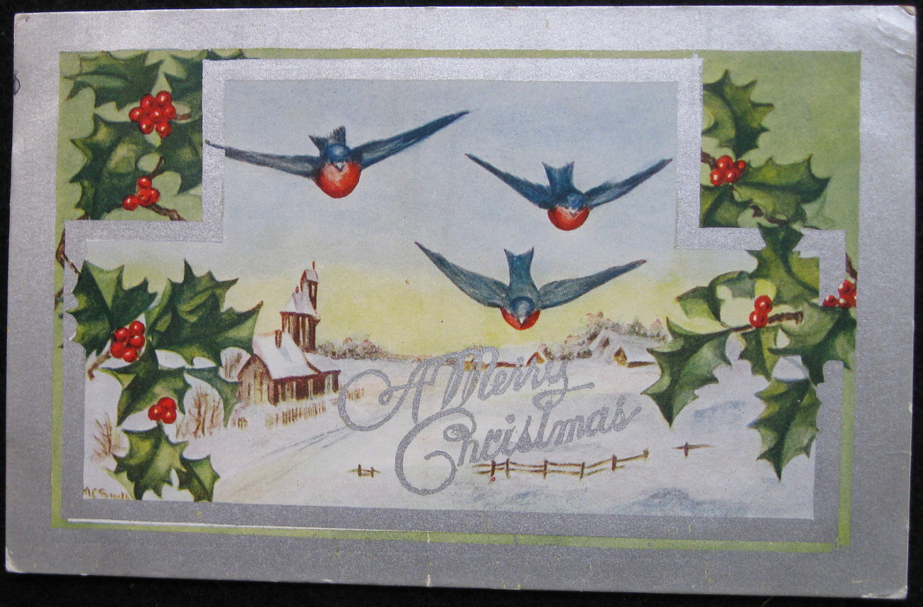 Primary image for Early Divided-back, Embossed Christmas Postcard, A Merry Christmas, Bluebirds, H