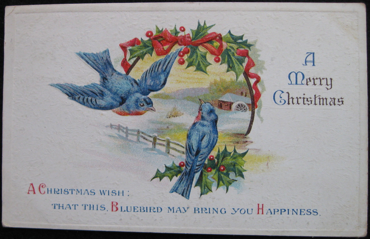 Primary image for Early Divided-back Era, Embossed Christmas Postcard, A Merry Christmas, Bluebird