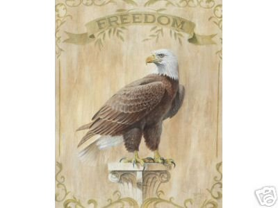 Eagle Freedom Jenkins Colonial 8 x 10 Art Print