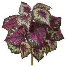 "16"" Wax Begonia Bush (Set of 6) - $53.32"