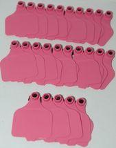 Destron Fearing DuFlex Visual Id Panel Tags Livestock Large Pink 25 Set Blank image 4