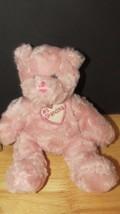 Beanbag Plush teddy bear #1 Grandma rose pink swirled fur Plushland gift - $9.89