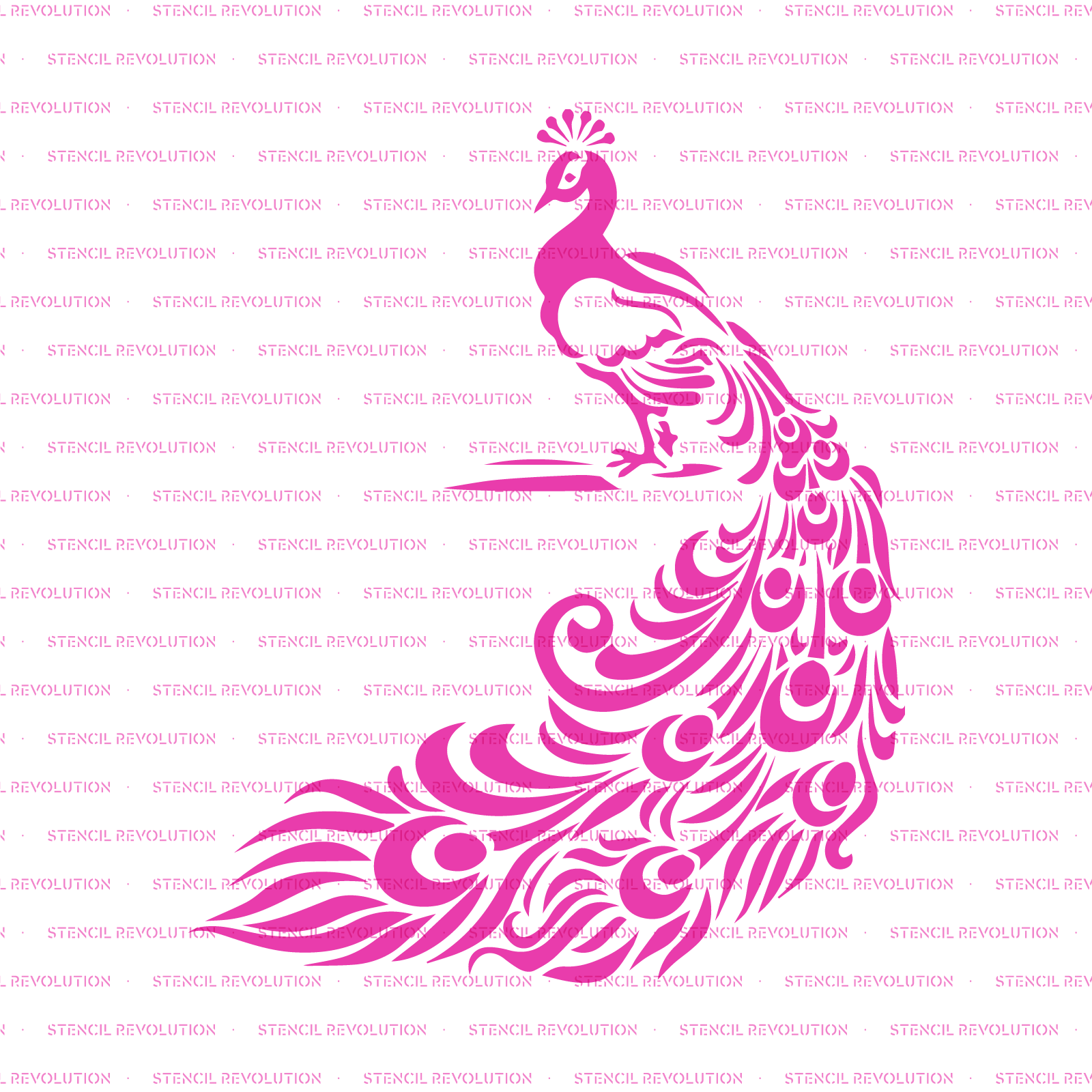 Peacock Stencil - Reusable Stencil of Peacock Feathers in Small & Large Sizes
