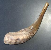 "Judaica Shofar Kosher Ram's Horn High Quality Half Polished Natural 10.5"" image 2"