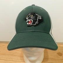 Panthers Richardson Unisex Cap Large XL Flexfit Adjustable Green Basebal... - $13.85