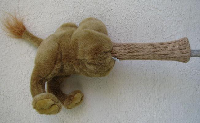 Camelbutt2