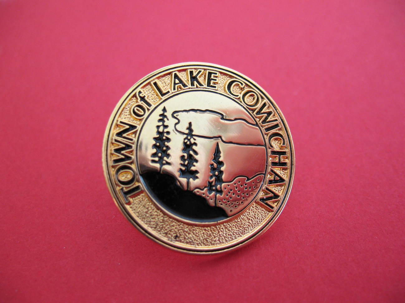 Primary image for Lake Cowichan British Columbia Souvenir Lapel Hat Pin