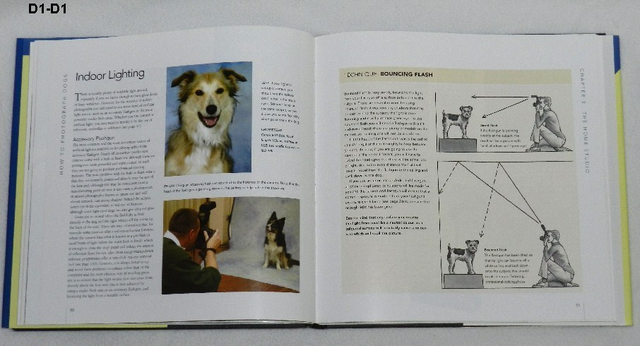 How to Photograph Dogs  by Nick Ridley