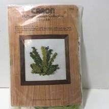 "Ferns Crewel Kit Caron Hallmark 5"" x 5"" Opened Vintage - $9.74"