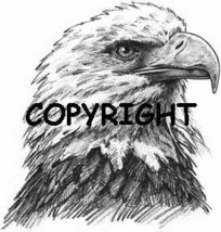 Eagle Head New Mounted Rubber Stamp - $9.99