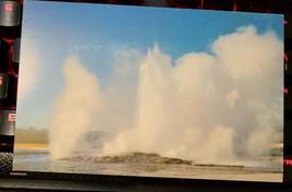 Postcard CLEPSYDRA GEYSER Yellowstone YNP Lower Basin National Park Haynes