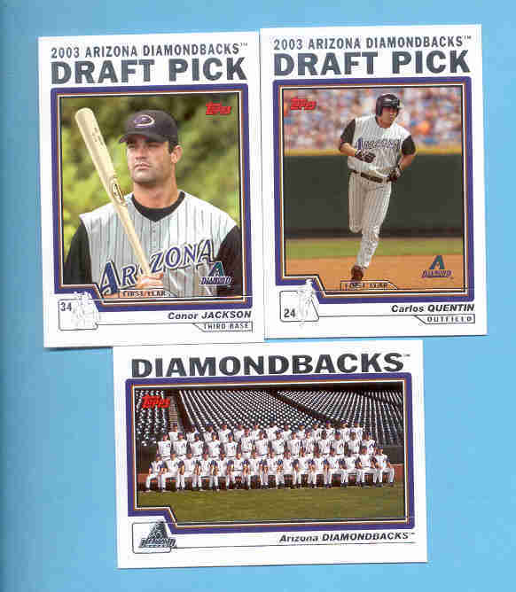 2004 Topps Arizona Diamondbacks Baseball Team Set