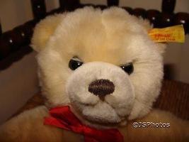 Steiff Original Molly Teddy Bear 019555 With Tags 1991 - $325.00