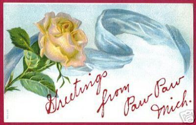 Paw Paw MI Greetings Rose Floral 1907 Postcard BJs